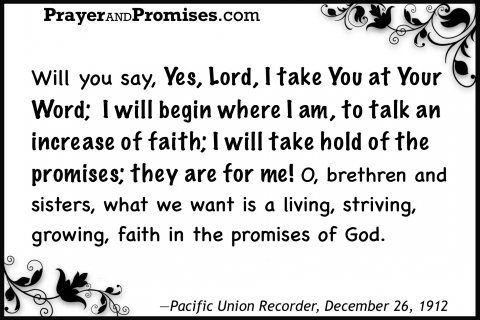 Word, talk faith, take hold of the promises, living growing faith in promises